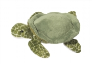 Tortue 7