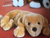 Golden Retriever 13''  1640